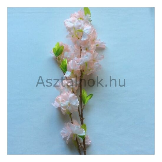 Virágpompa tavaszi ág