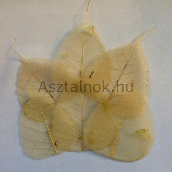 Bézs fátyollevél dekoráció
