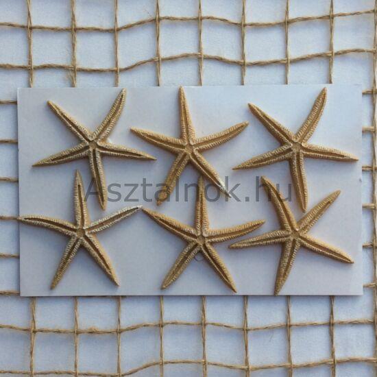 Tengeri csillag dekoráció készlet bézs