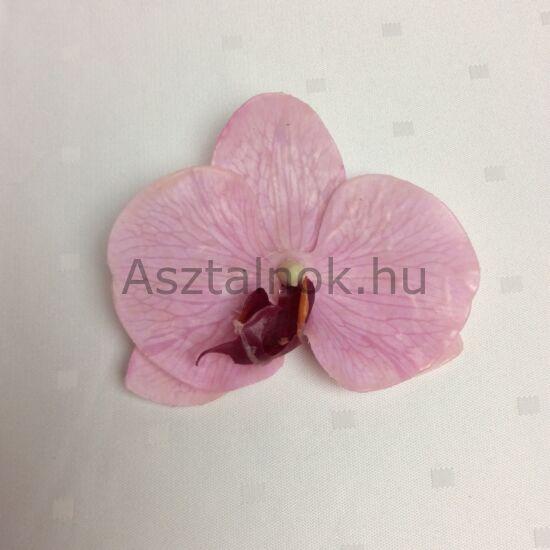 Orchidea dekorációs virágfej rózsaszín