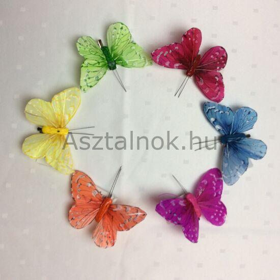 Pillangó dekorációs készlet
