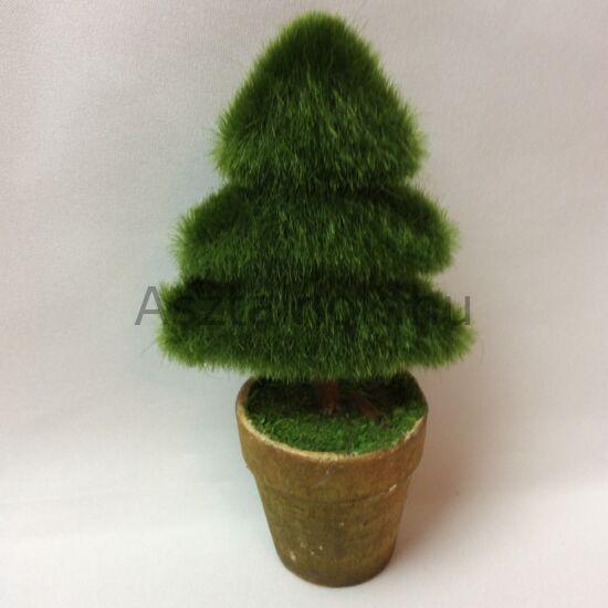 Mini fenyőfa dekoráció